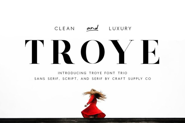 Troye Font Trio - Clean  Luxury Fonts Similar to Didot