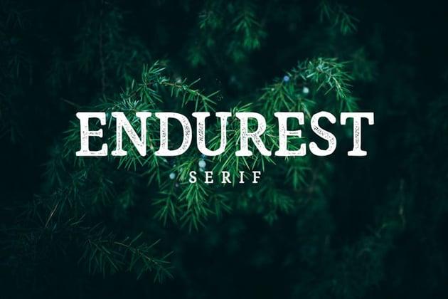 Endurest Font
