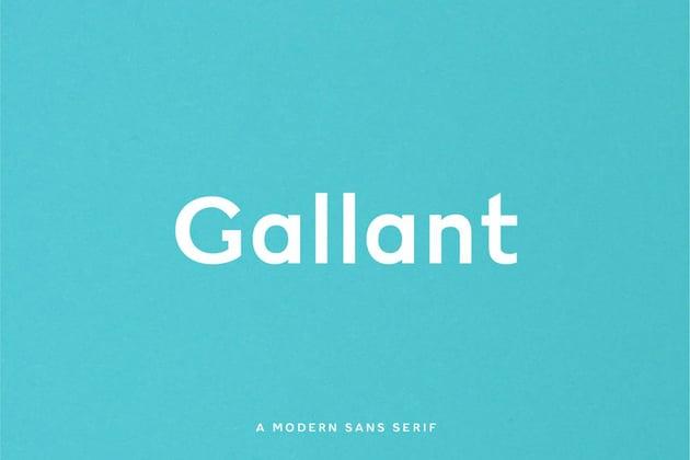 Gallant Geometric Sans Serif Typeface