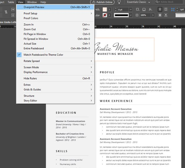 view modes indesign