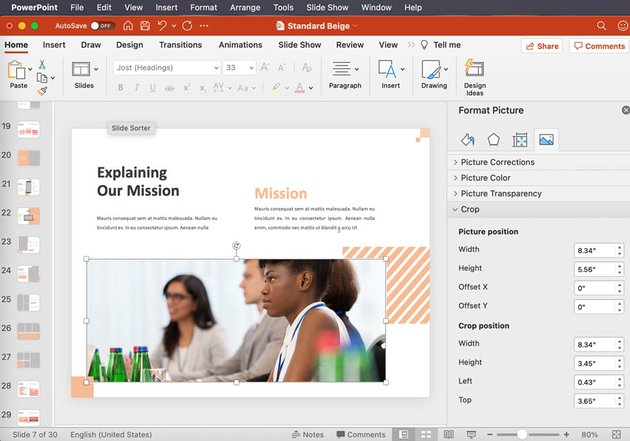 powerpoint picture panel
