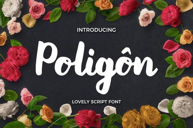 Poligon Fonts