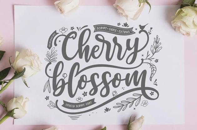 Cherry Blossom Sans Script Font