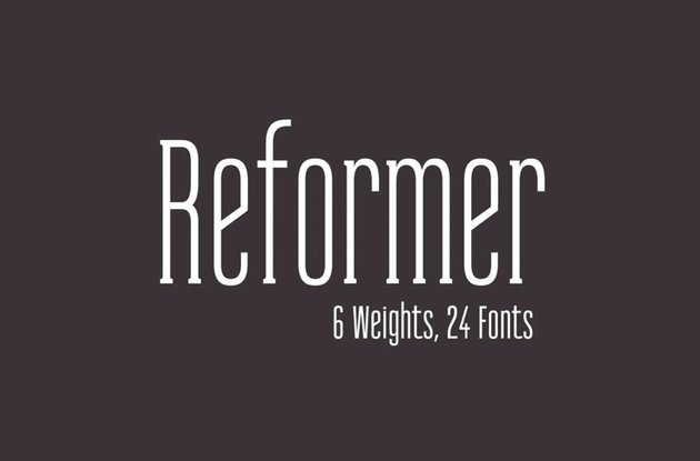 Reformer Serif Font Family
