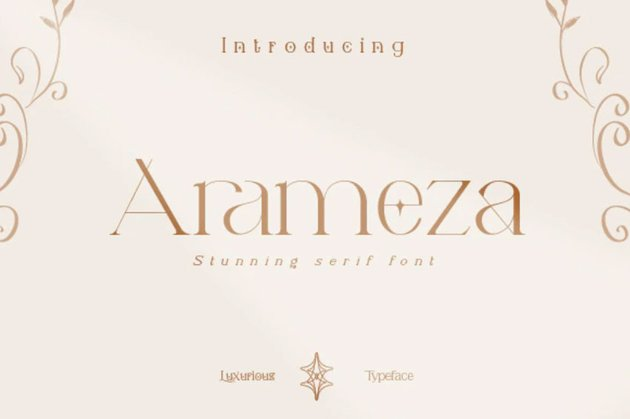 Arameza Thin Serif Font