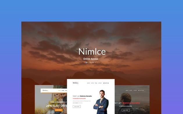 NimIce Best Newsletter Design 2021