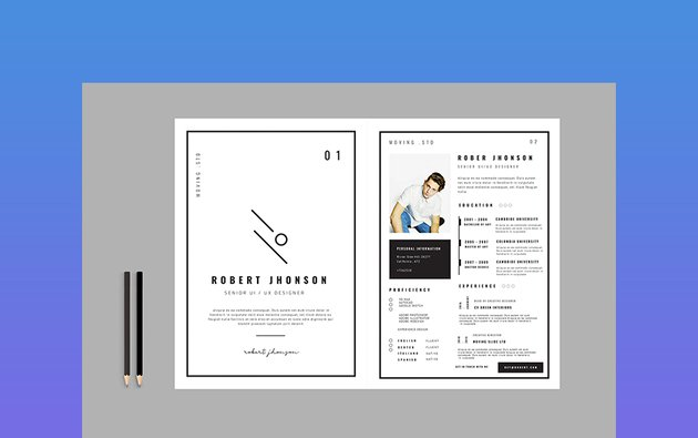 Creative Professional Resume Template  One of the creative resume examples that is trending in 2018