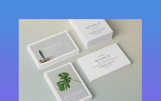 NATURALIS Innovative Business Cards 2021