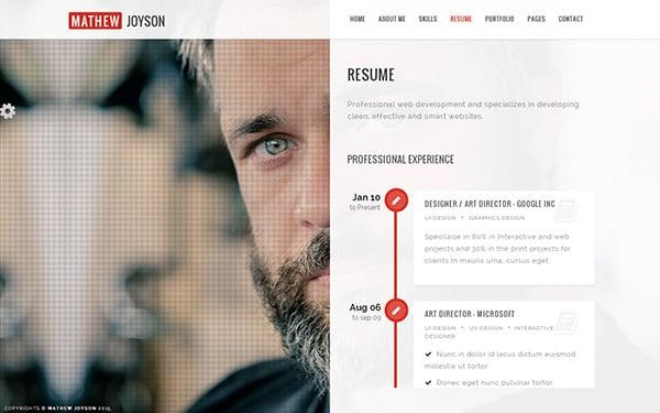 Slide online resume website theme
