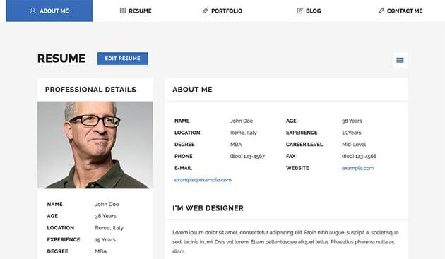 Example of professional resume website design