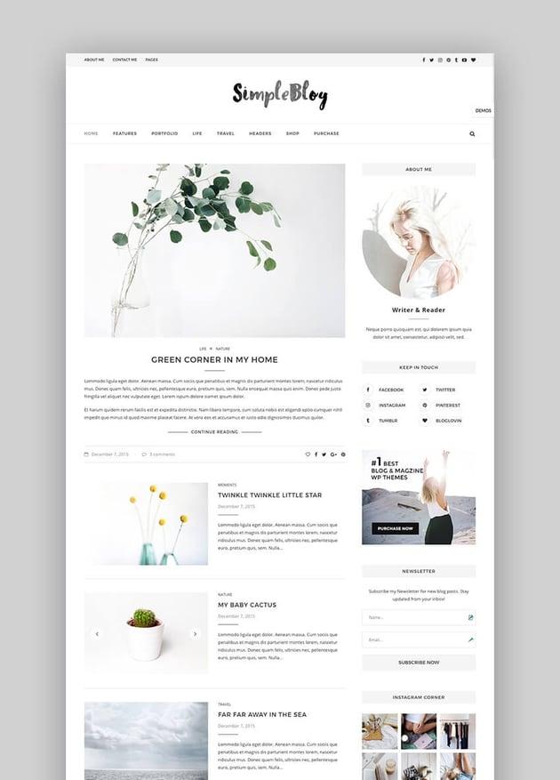 Soledad simple premium blog WordPress theme