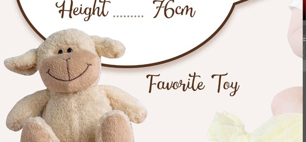 Add favorite toy text