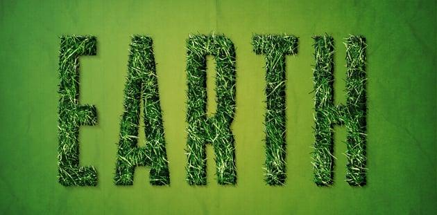 Add blades of grass