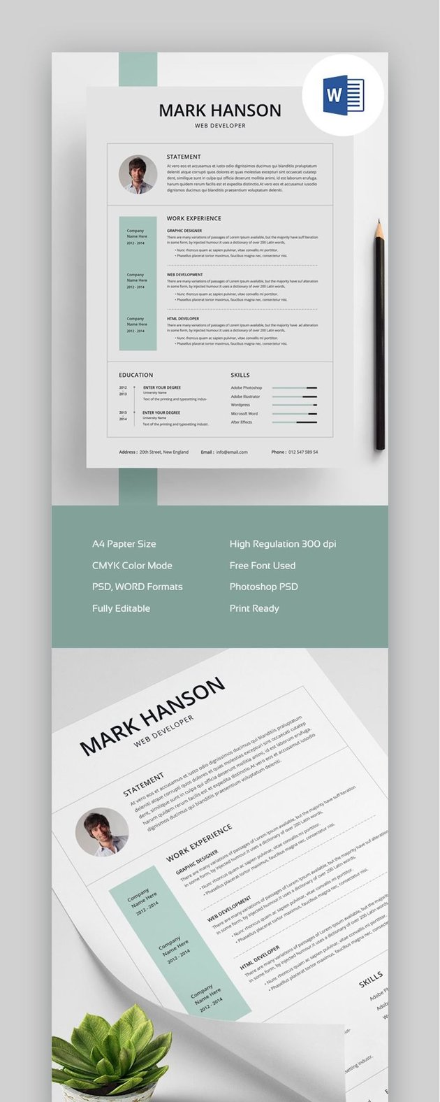 Clean and Creative Resume