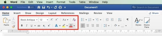 Text Formatting in Word