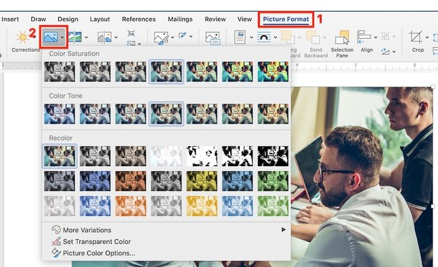 Picture Format Color Saturation Tone and Recolor in Microsoft Word
