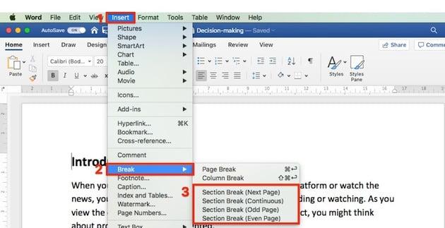 Insert Section Break - Microsoft Word