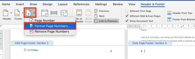 Format Page Numbers in document section - Microsoft Word