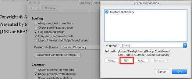 Word Edit Custom Dictionaries
