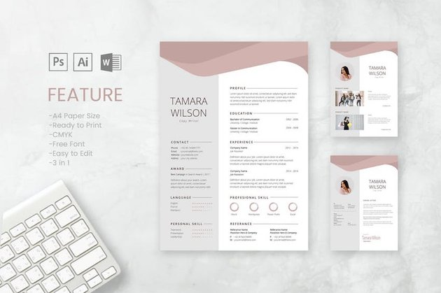 Cover Letter Template Word - Professional CV and Resume Template Tamara