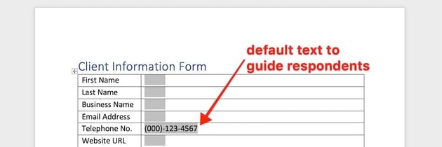 how to make a fillable form in word - text boxes added
