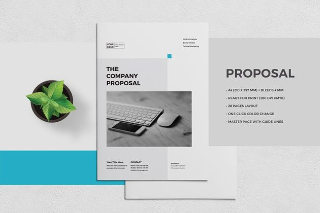 sample business proposal template