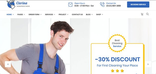 Clerina - Cleaning Services WordPress Theme Download