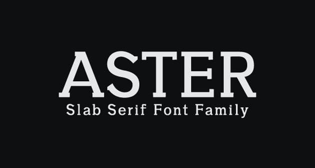 Aster Slab Serif Font Family