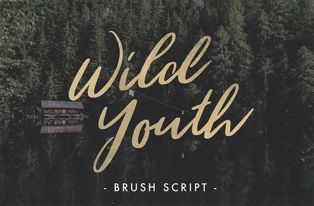 Wild Youth - Silhouette Script Fonts