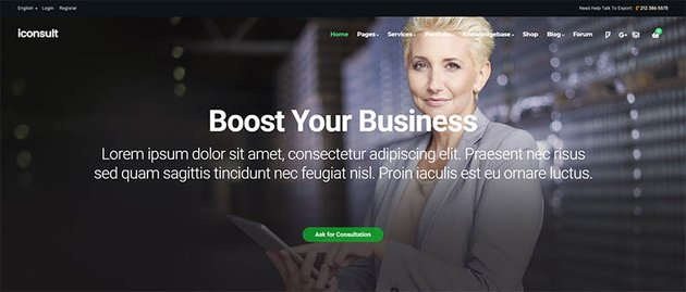 iConsult Business Financial Consulting WordPress Theme