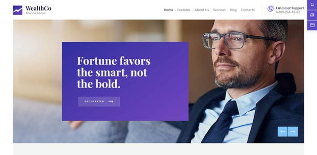 WealthCo A Fresh Business Financial Consulting WordPress Theme