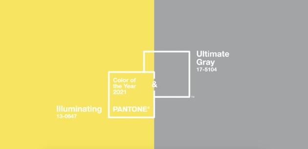 Verleihen Sie Ihrem professionellen PowerPoint-Hintergrund einen trendigen Farbtupfer.