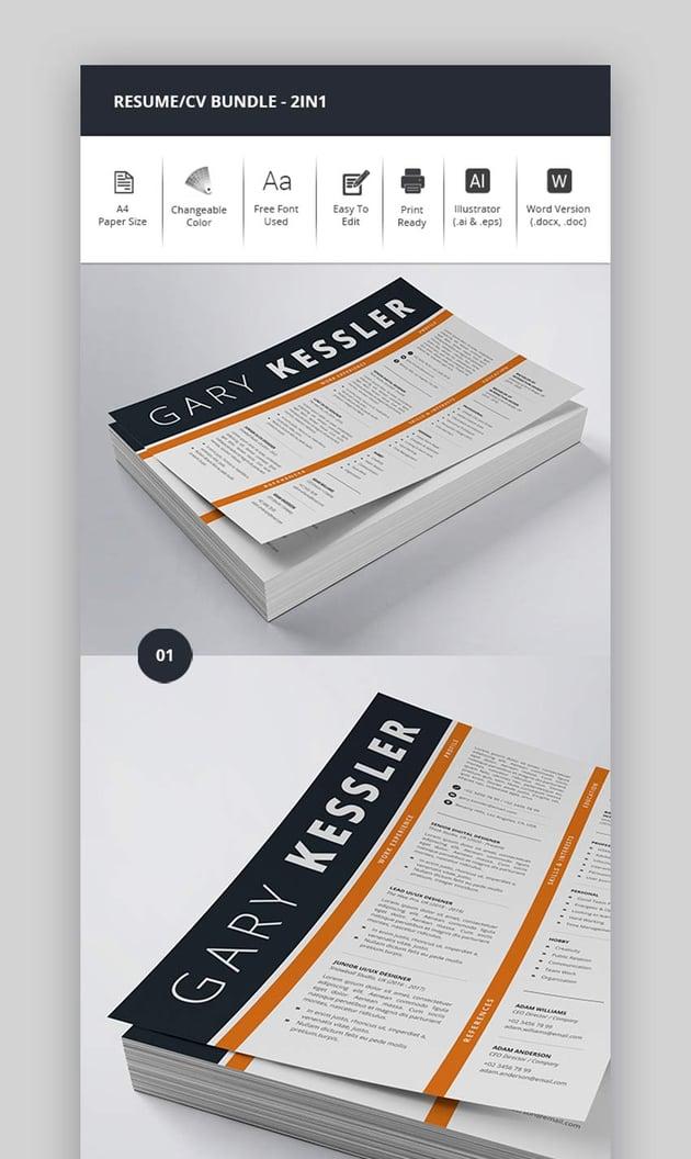 Modern CV Format 2-In-1