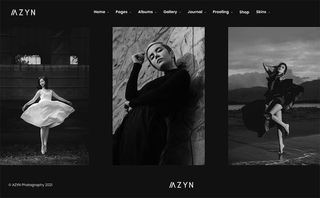Azyn - WordPress Photo Gallery Theme