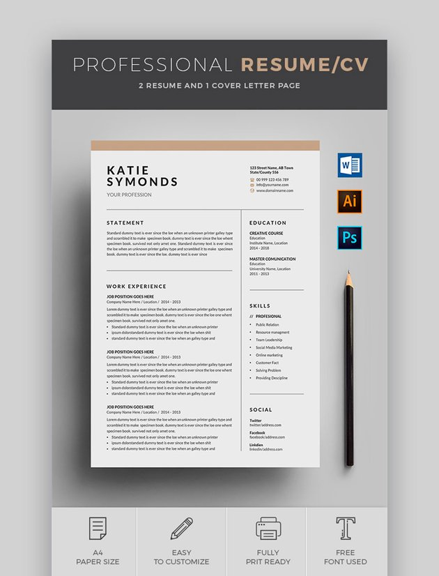 Professional Resume - Cool Resume Template