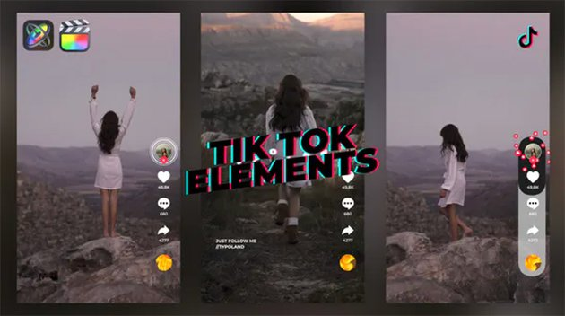Get this new TikTok video template to make really cool videos.