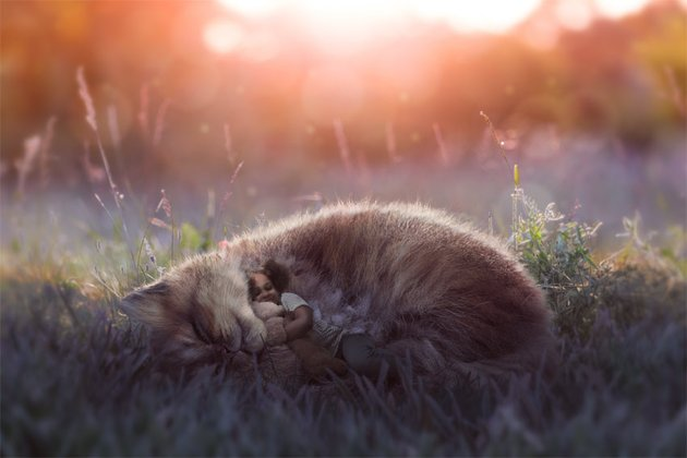 How to Create a Dreamy Glow Effect Photo Manipulation in Photoshop