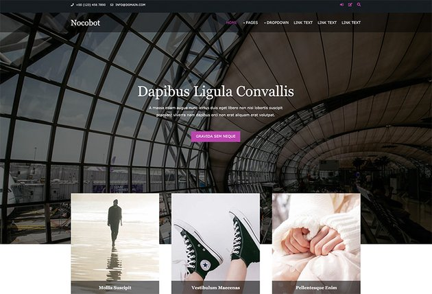 Nocobot Free HTML Website Template