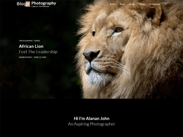 BlogJr Photography