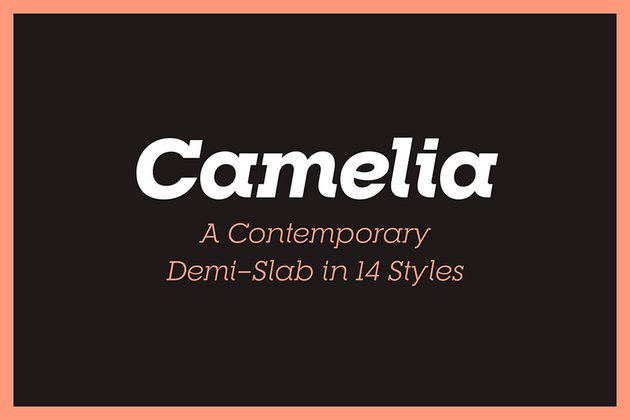 RNS Camelia Best Serif Fonts
