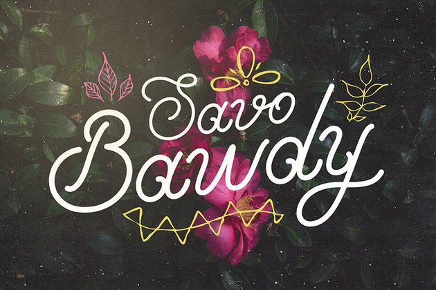 Savo Bawdy Best in Cursive Font Styles