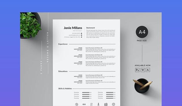 Minimalist Resume Template Word