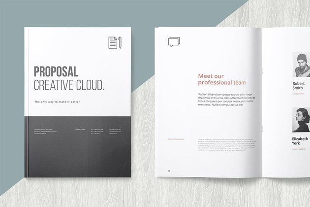 Project Proposal Template Word With Muted Color Schemes