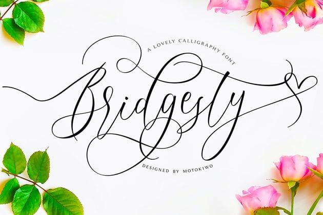 Bridgesty Modern Calligraphy Script Font Download