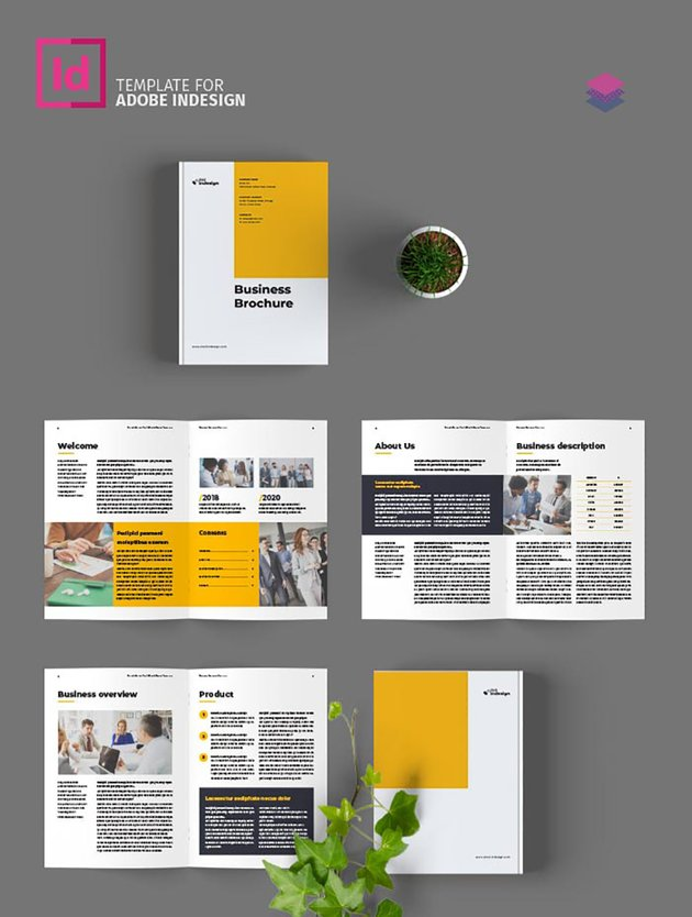 Free Business Brochure Template InDesign