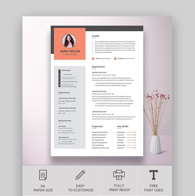 Clean Resume CV Word Template