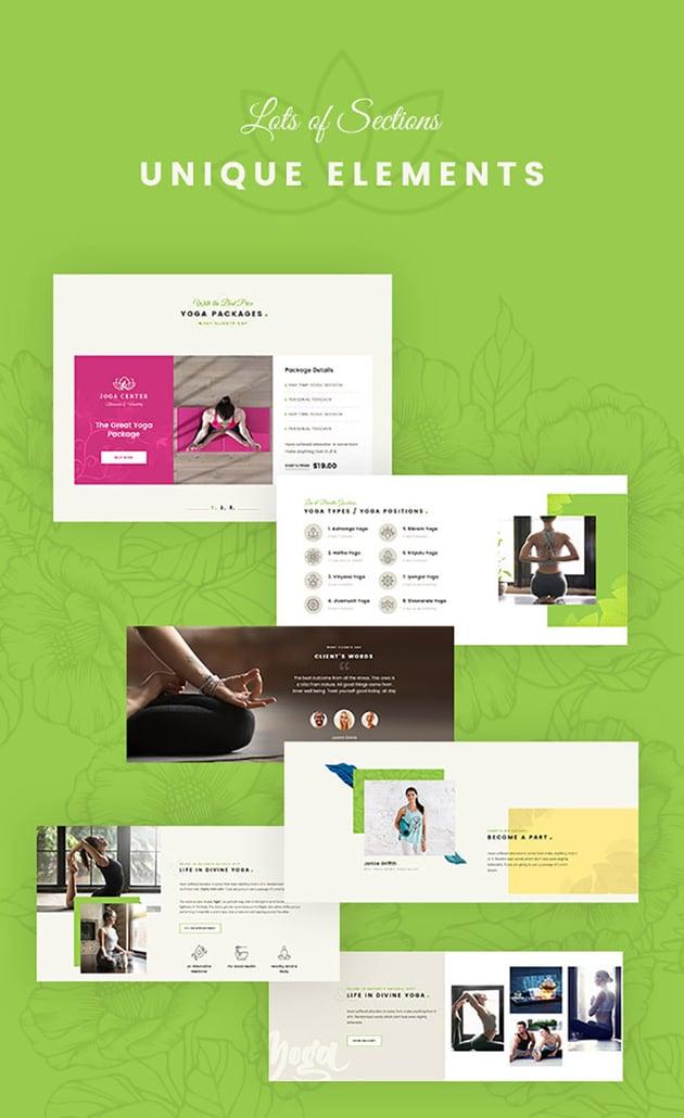 Adhi Yoga and Chiropractic WordPress Theme