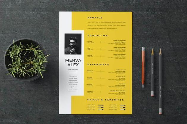 amazing resume samples