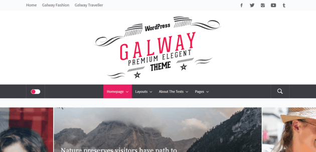 Galway - one of the best blog themes with a minimalistic design
