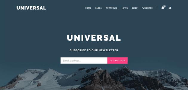 Universal - lightweight multi-purpose theme for WordPress